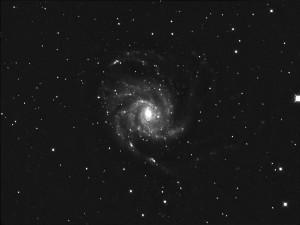 M101-Lum-Sum